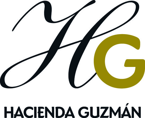 Hacienda Guzman | Olive Connection in Brookline MA